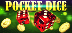 Pocket Dice