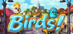 Birds To Go