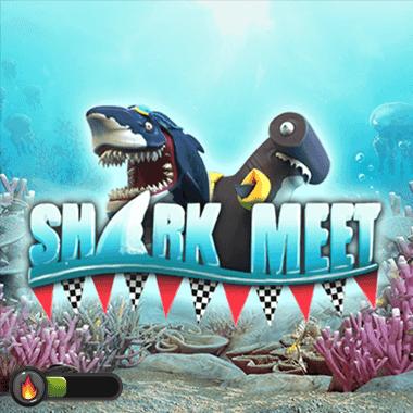 booming/SharkMeet
