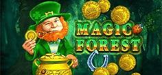 amatic/MagicForest