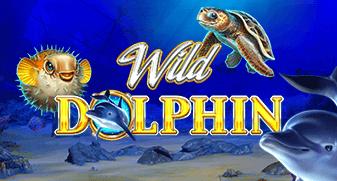gameart/WildDolphin